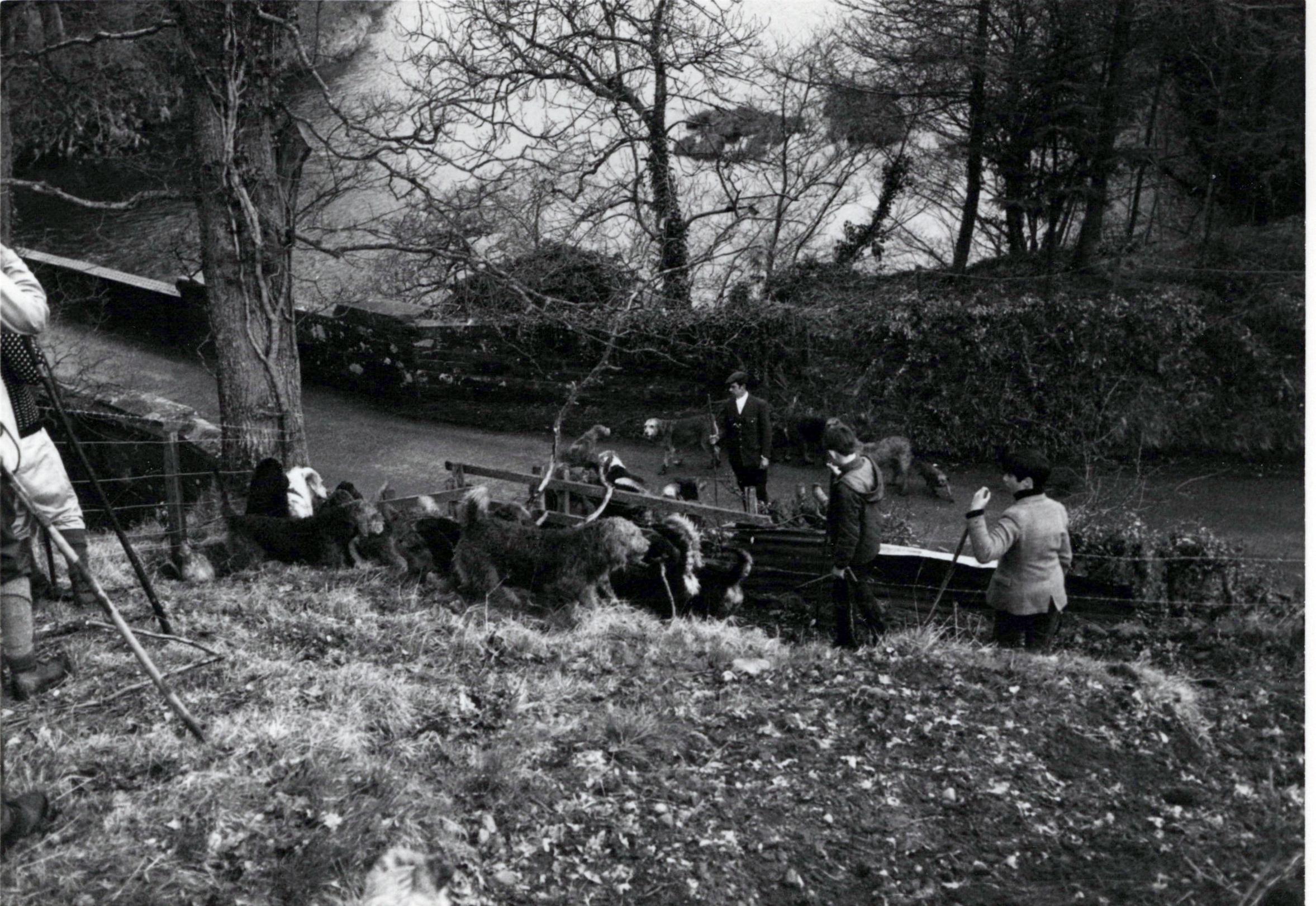1970_Mei_Otterhound-Schotland_0004_a