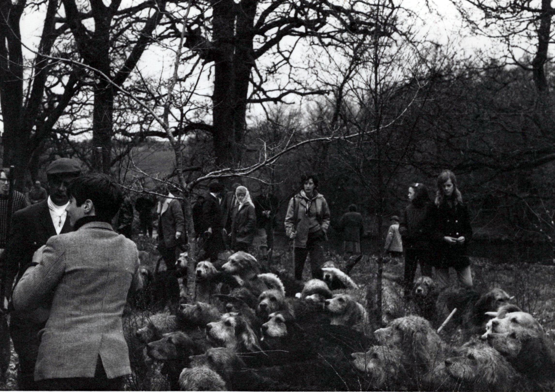 1970_Mei_Otterhound-Schotland_0005_a