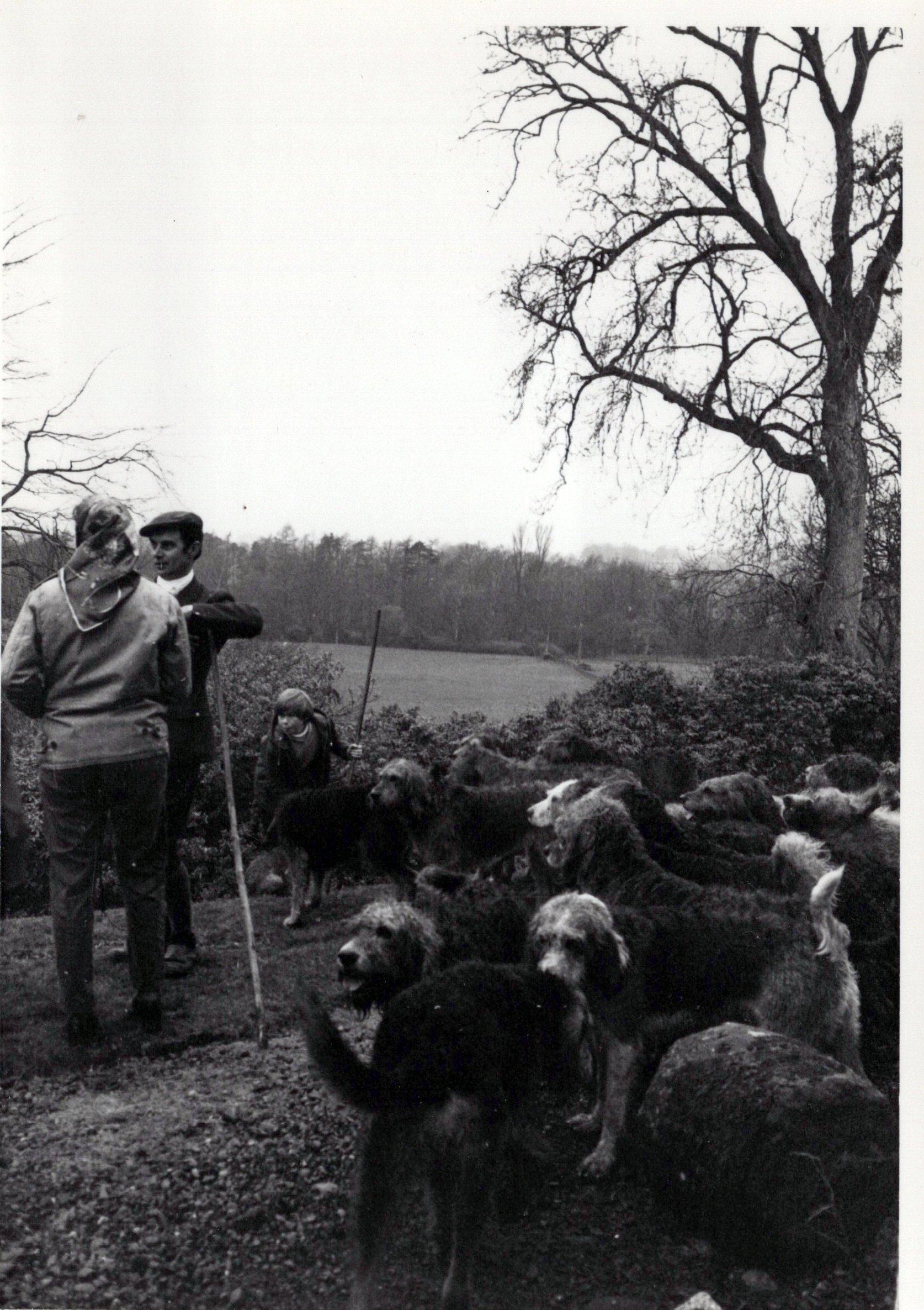 1970_Mei_Otterhound-Schotland_0007_a