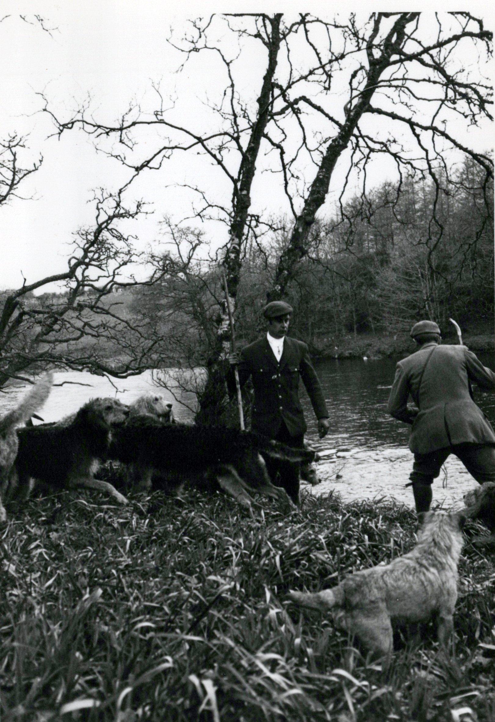 1970_Mei_Otterhound-Schotland_0008_a