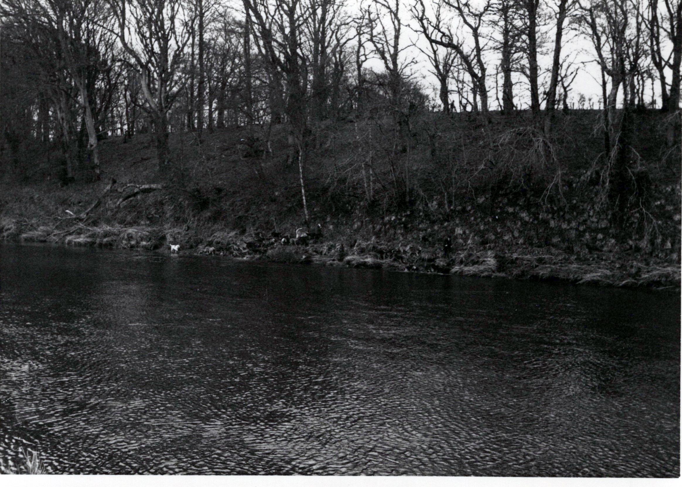 1970_Mei_Otterhound-Schotland_0017_a