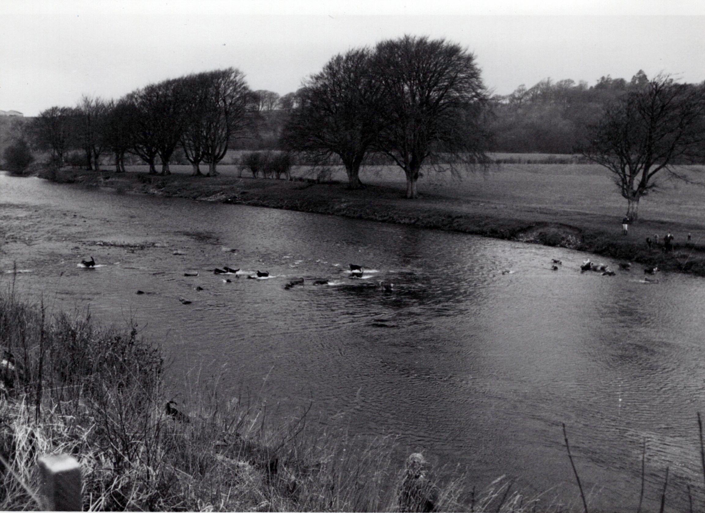 1970_Mei_Otterhound-Schotland_0020_a