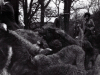 1970_Mei_Otterhound-Schotland_0009_a