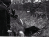 1970_Mei_Otterhound-Schotland_0019_a