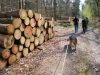 2019-04-07-08-Otterkound-wandeling-Uedem