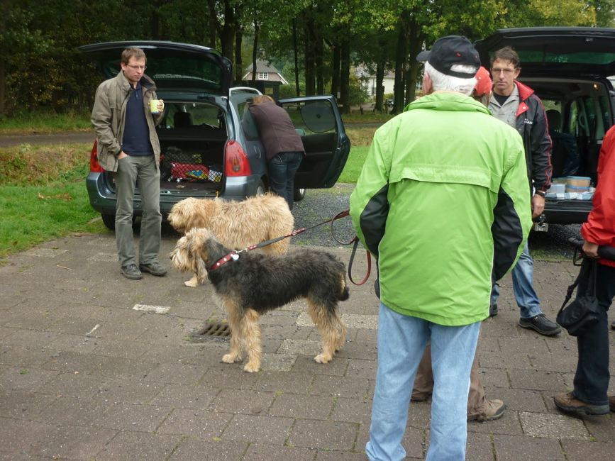 otterhound_2520wandeling_252009102011_2520003